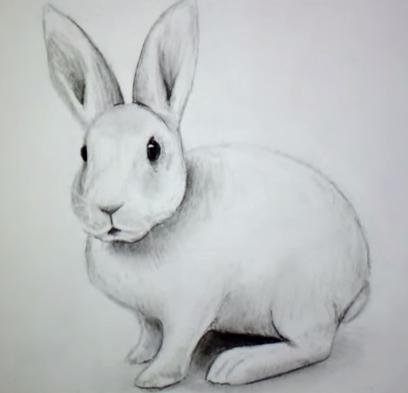 Comment dessiner un lapin apprendre dessiner - Lapin a dessiner ...