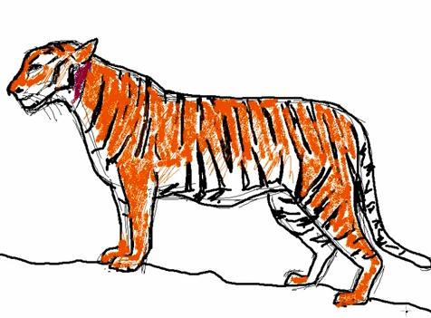 Comment dessiner un tigre apprendre dessiner - Dessin de tigre facile ...
